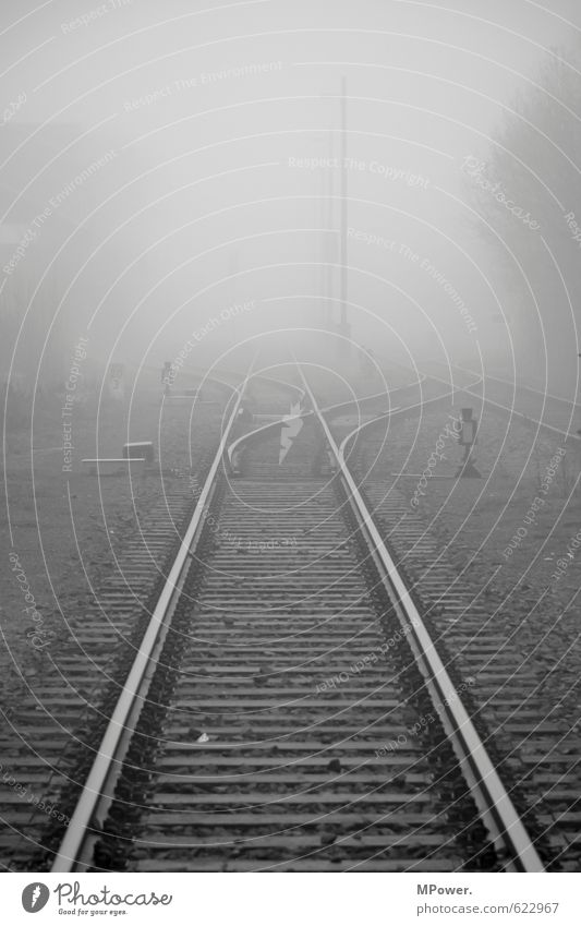 Travel photography Gray Fog Transport Railroad Logistics Tracks Smoking Railroad tracks Discover Traffic infrastructure Train station Dreary Passenger traffic