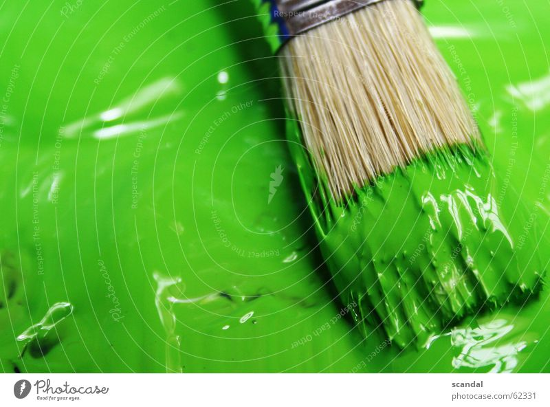 It's so green... Green Paintbrush Reflection Colour Varnish Painting (action, work) Draw paint reflections