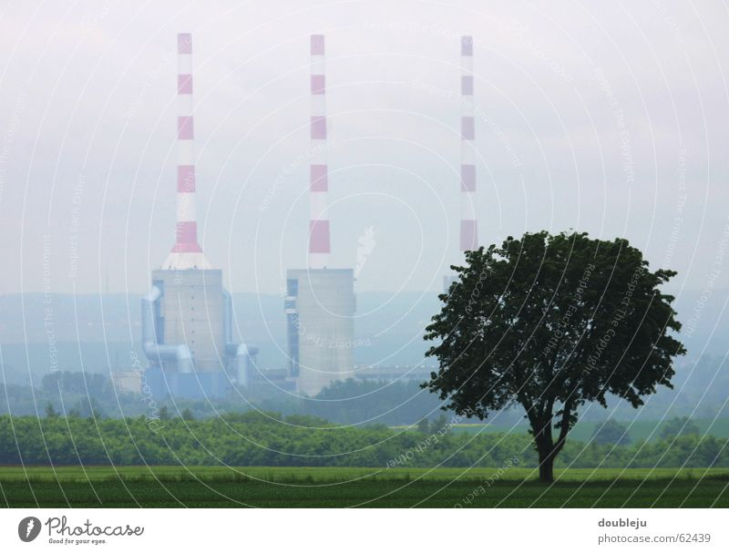Tree Industrial Photography Factory Chimney Dreary Cover
