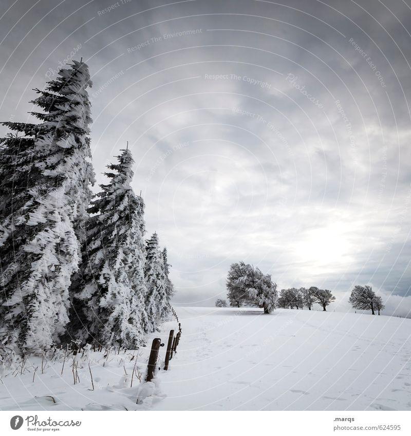 Sky Nature Sun Landscape Clouds Winter Cold Snow Moody Weather Perspective Adventure Converse