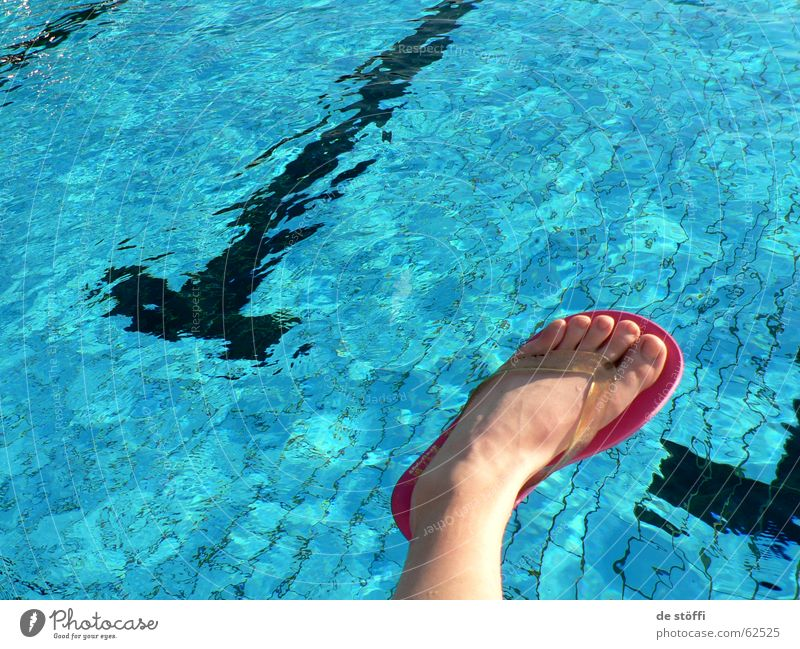 Let me take a bath! Swimming pool Flip-flops Style Summer Vacation & Travel Toes Water Feet Blue Joy