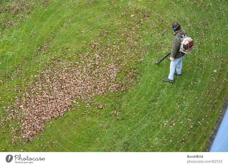 leaf vacuums Autumn Leaf Working man Meadow Work and employment Time Infinity Long Garden