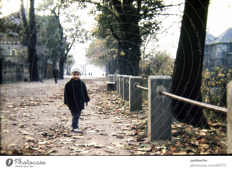 Very early IV Child Autumn Leaf Small Town Sunday Sixties Boy (child) Handrail To go for a walk old photo