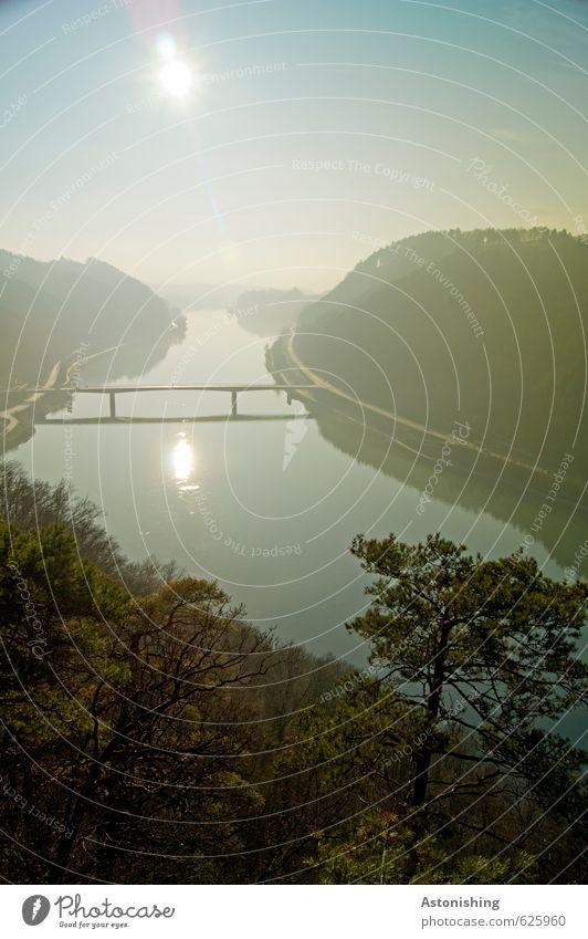 the Danube bridge Environment Nature Landscape Plant Air Water Sky Cloudless sky Horizon Sun Sunrise Sunset Sunlight Autumn Weather Beautiful weather Tree