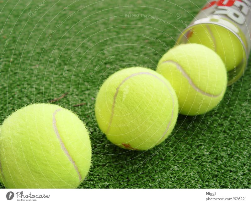 Green Yellow Sports Grass Ball Lawn Tennis Felt Tennis ball Wimbledon
