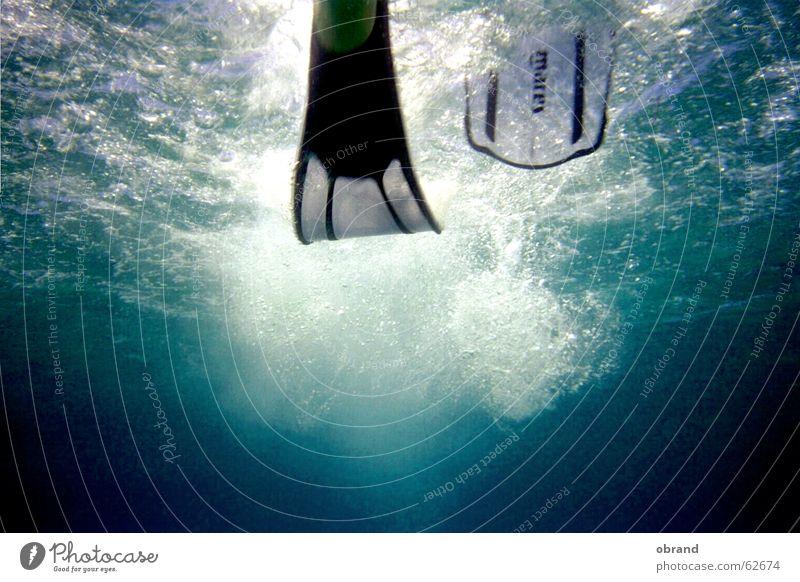 Water Water wings