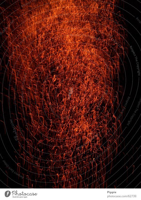 shower of fire Embers Glow Blaze Spark