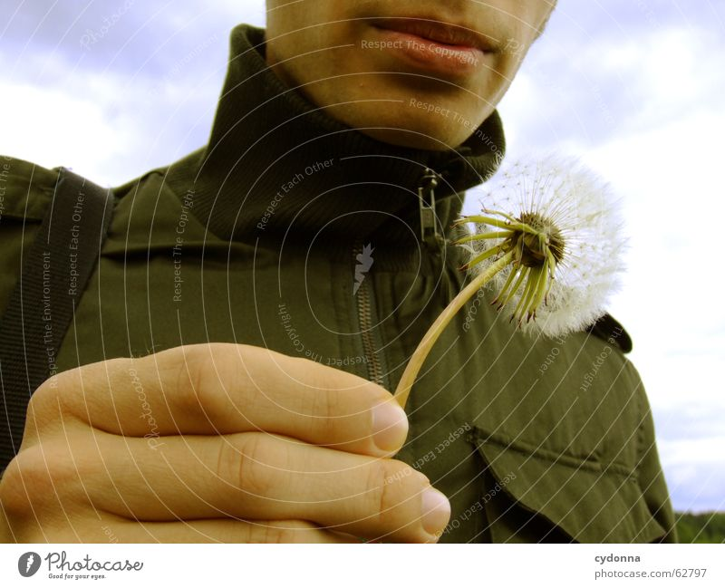 pustefix Hand Blow Man Lips Dandelion Spring Ease Hiking Release Plant Portrait photograph Safety Dangerous Delicate Graceful Blossom Human being Beautiful