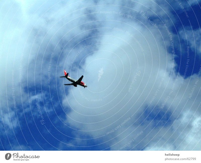 learn to fly Airplane Clouds White Doomed Sky Freedom Flying Blue Aviation
