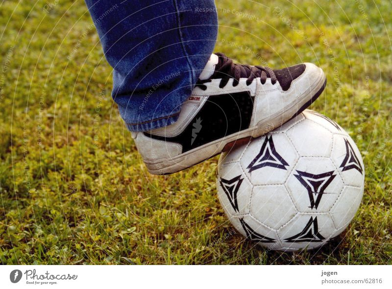 White Green Summer Joy Sports Meadow Playing Grass Soccer Ball Lawn Leisure and hobbies Gate Individual Stadium Defensive