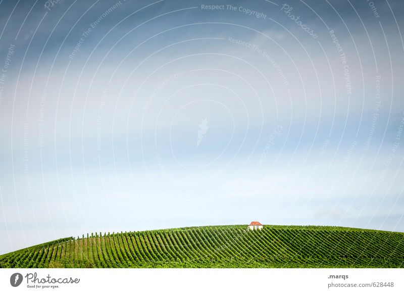 Sky Nature Beautiful Plant Summer Loneliness Landscape Above Idyll Beautiful weather To enjoy Hill Agriculture Hut Rural Vineyard