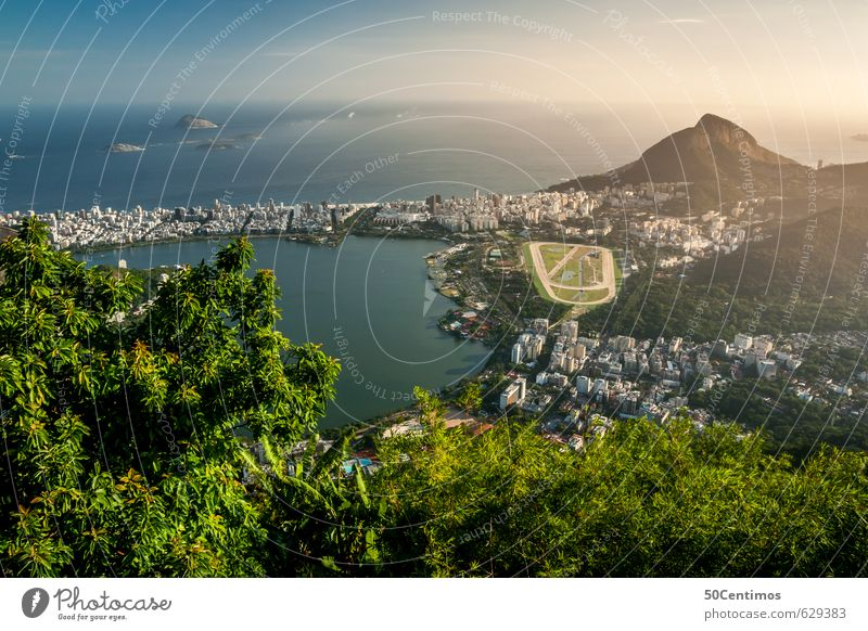 View over Rio de Janeiro Vacation & Travel Tourism Trip Far-off places Freedom Sightseeing City trip Cruise Summer Summer vacation Sun Beach Ocean Landscape