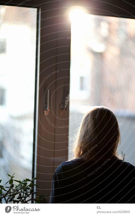 Human being Woman Sun Loneliness Calm Adults Window Sadness Feminine Head Dream Flat (apartment) Room Living or residing Beautiful weather Future