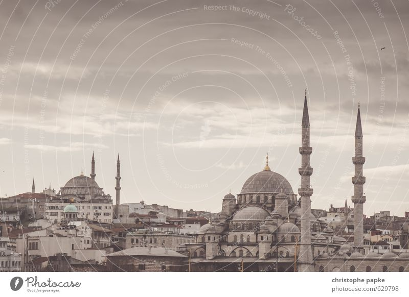 Istanbul Skyline Vacation & Travel Tourism Sightseeing City trip Turkey Town Downtown Old town Church Manmade structures Building Mosque Tourist Attraction