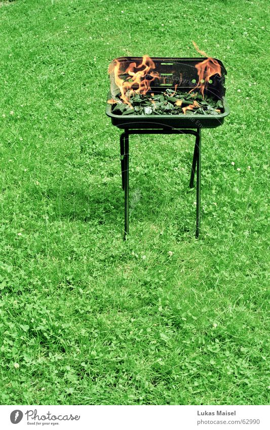 *fire and grass Barbecue (event) Summer Vacation & Travel Meadow Barbecue (apparatus) Hot Embers Grass Charcoal grill Garden Blaze briquettes 1 Beginning