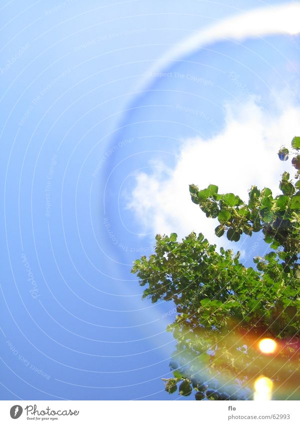 Water Sky Tree Green Blue Clouds Colour Playing Style Air Art Wind Earth Bushes Bubble Soap bubble