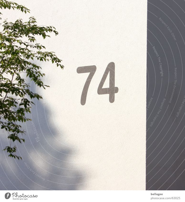 74 Digits and numbers Wall (building) Tree House number Corner Gray White Exterior shot Shadow gerde seventy-four
