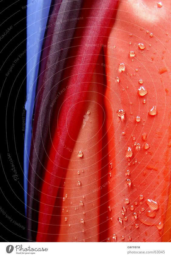umbrella Umbrella Red Wet Multicoloured Rain Cloth Textiles Rainproof Watertight Autumn Weather All-weather Damp Macro (Extreme close-up) Close-up Orange