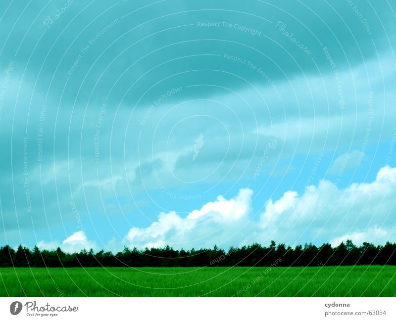 Nature Sky Green Summer Clouds Forest Dark Meadow Moody Power Field Weather Hope Energy industry Growth Vantage point