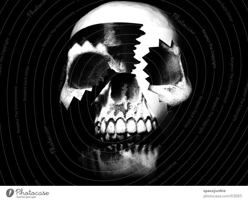 White Black Dark Art Crazy Africa Mask Freak Tradition Magic Skeleton Death's head Magician Obsessed Typesetter Black Magic
