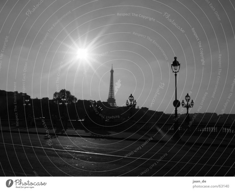 Paris, Paris ... Eiffel Tower Iron Steel Europe France Town Light Dream Street lighting Lantern Lamp Vantage point Back-light Exterior shot Sun Shadow