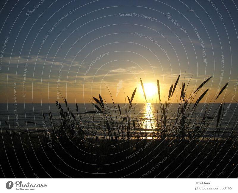Water Sky Sun Ocean Green Blue Beach Black Clouds Dark Grass Waves Wind Sylt