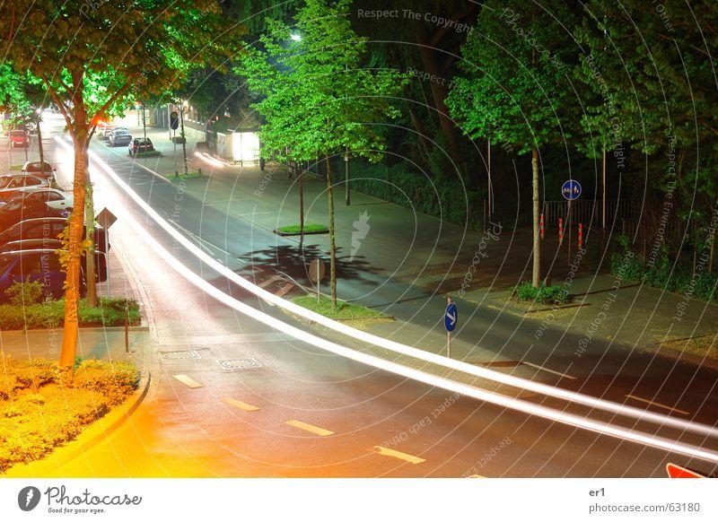 lights Light Lamp Tree Car Street