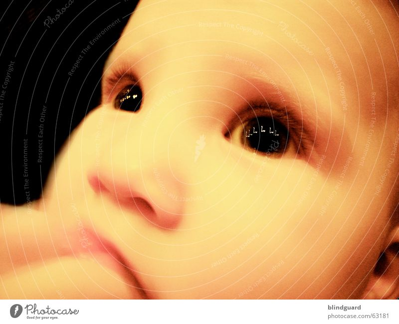 The melody of your eyes Curiosity Child Toddler Baby Emotions Safety (feeling of) Children's eyes Glittering Eyelash Reflection Pensive Absentminded Dream Birth