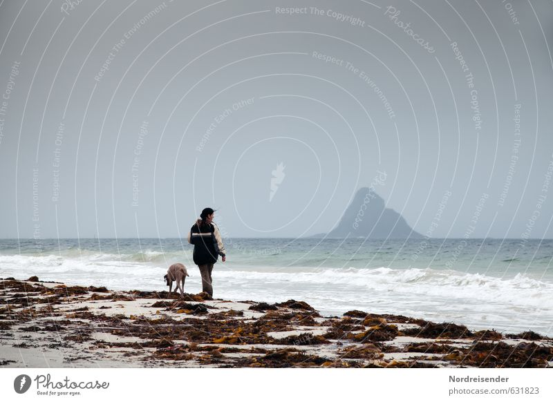 Woman with dog at the sea Senses Relaxation Calm Vacation & Travel Trip Adventure Far-off places Freedom Beach Ocean Island Waves Human being Adults Elements