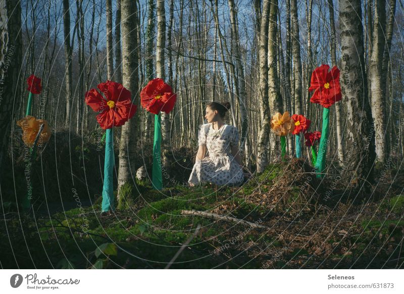 Human being Woman Sky Nature Plant Summer Tree Flower Landscape Forest Adults Environment Feminine Spring Blossom Sit