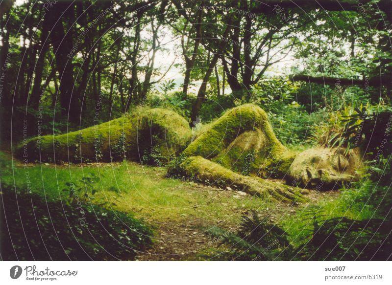 Nature Art Garden Park Sculpture Garden art