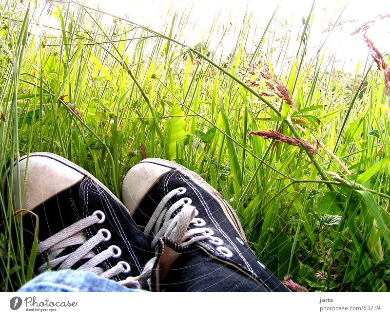 Flower Summer Relaxation Meadow Grass Dream Footwear Sleep Peace Lie Boredom Chucks Sneakers Flower meadow Switch off