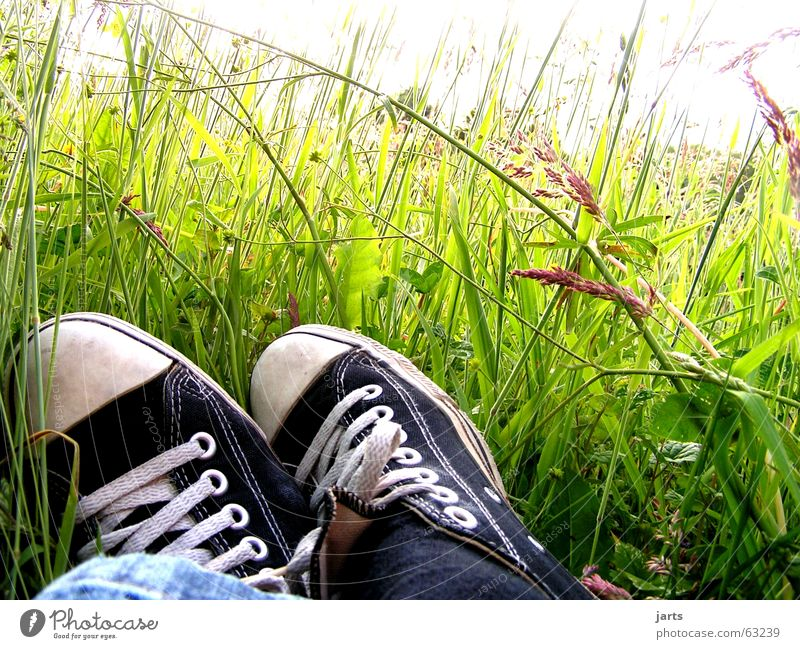 Flower Summer Relaxation Meadow Grass Dream Footwear Sleep Peace Lie Boredom Chucks Sneakers Flower meadow Switch off