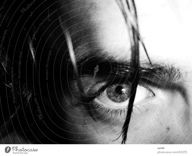 astute Strand of hair Pupil Eyelash Eyebrow Ingenuity Eyes eye Hair and hairstyles Iris Black & white photo Looking Snapshot