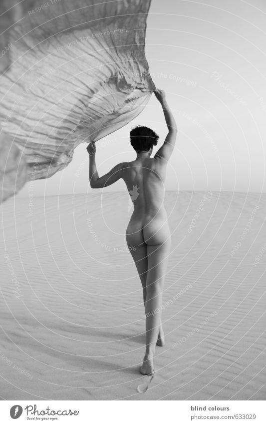 licence poétique Art Esthetic Contentment Nude photography Eroticism Woman Rag Blow Sky Walking Desert Sand Dune Woman's body Womens back Emancipation Back
