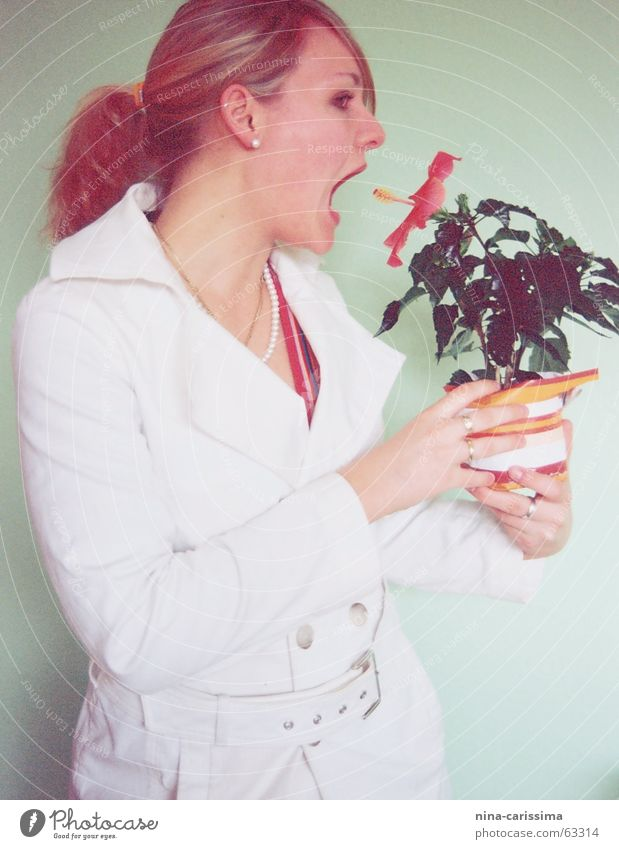 Woman White Green Flower Nutrition Cold Wall (building) Fashion Delicious Evil Coat Braids Vegetarian diet Ponytail