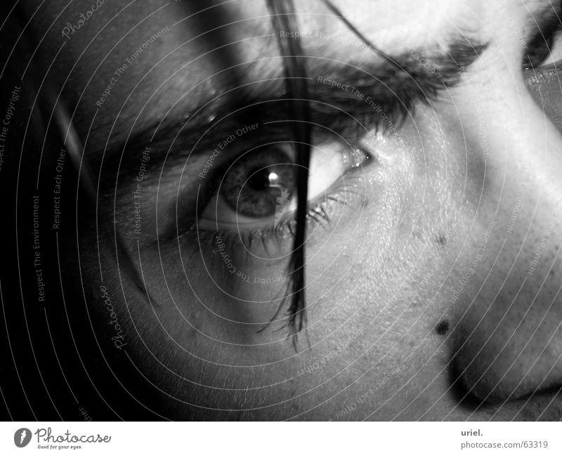Eyes Hair and hairstyles Eyelash Eyebrow Pupil Iris