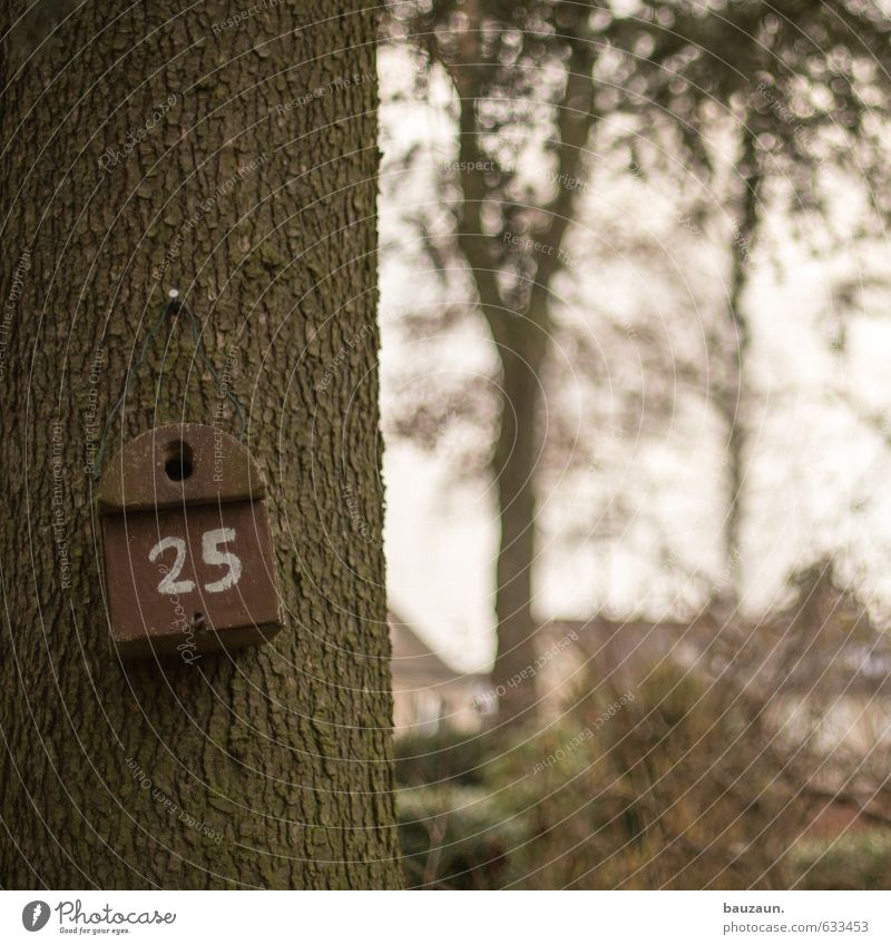 House number 25. Trip Garden Gardening Sky Plant Tree Bushes Park Bird Birdhouse Wood Digits and numbers Observe Living or residing Brown Happy