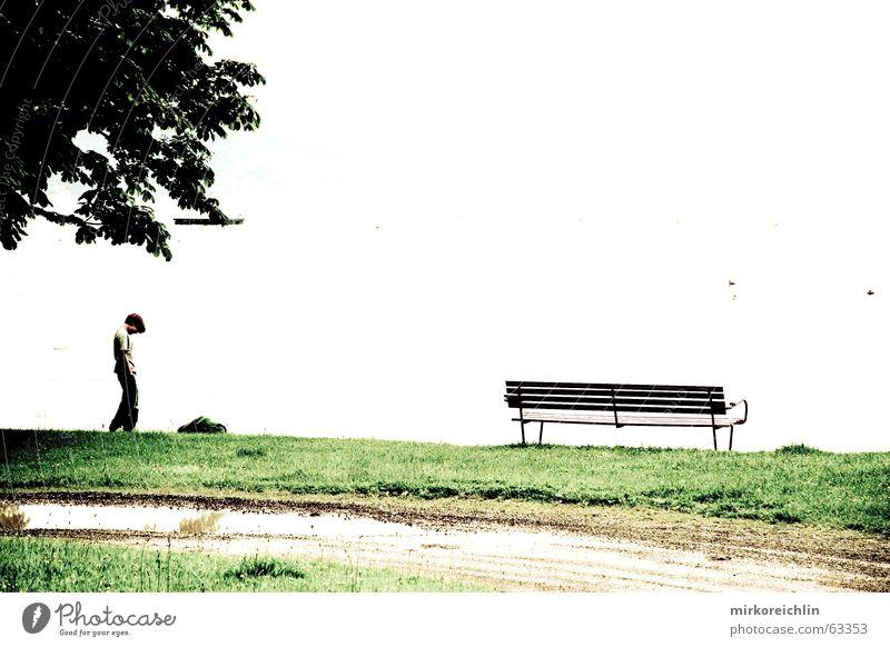 White Tree Boy (child) Meadow Lanes & trails Lake Empty Bench