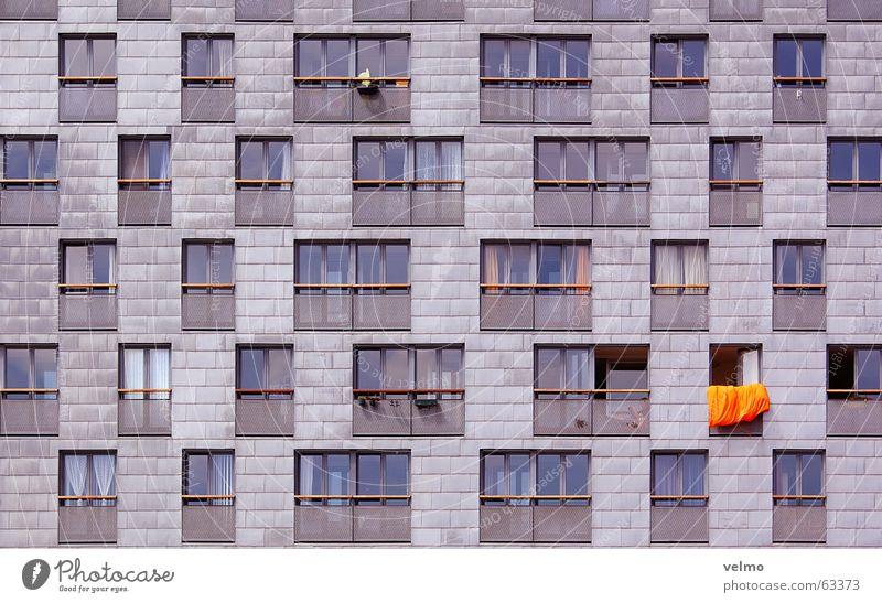 oranje bouwen Facade Window Grid Pattern Anonymous Amsterdam Netherlands Orange symmetry Architecture