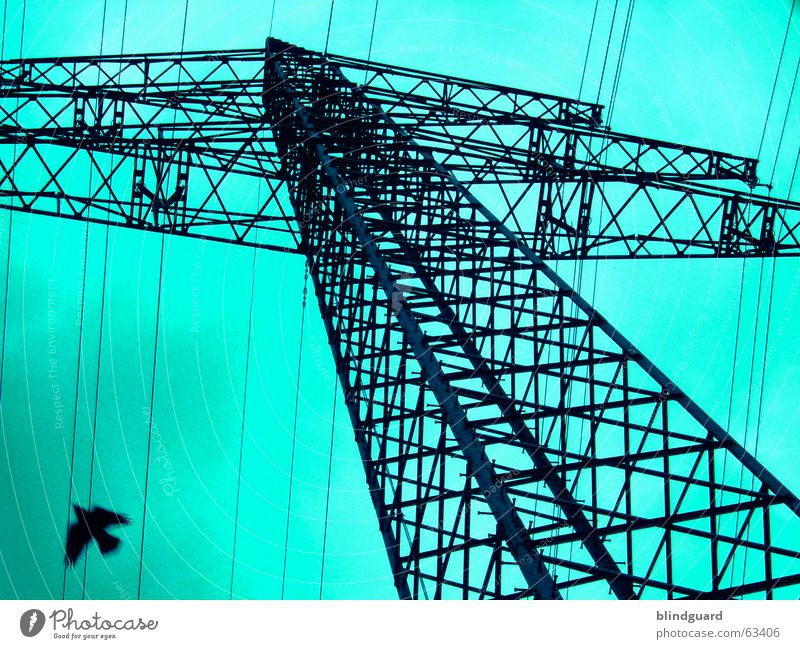 Sky Clouds Bird Flying Energy industry Electricity Cable Steel 30 Electricity pylon Construction Antenna Transmission lines High voltage power line Avaricious