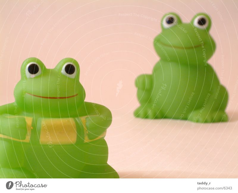 Green Toys Frog