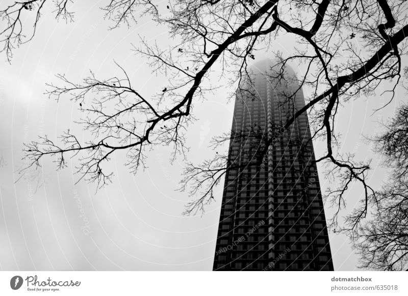 Into foggy skies Sky Fog Tree Frankfurt Trade Fair Germany Europe Town Downtown High-rise Tower Building Architecture Facade Landmark Concrete Glass Large