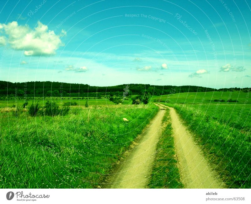 off Hope Grass Clouds Green In transit Sky Future Infinity Lanes & trails Nature Lawn Landscape Blue Fluid Vacation & Travel Target In pairs