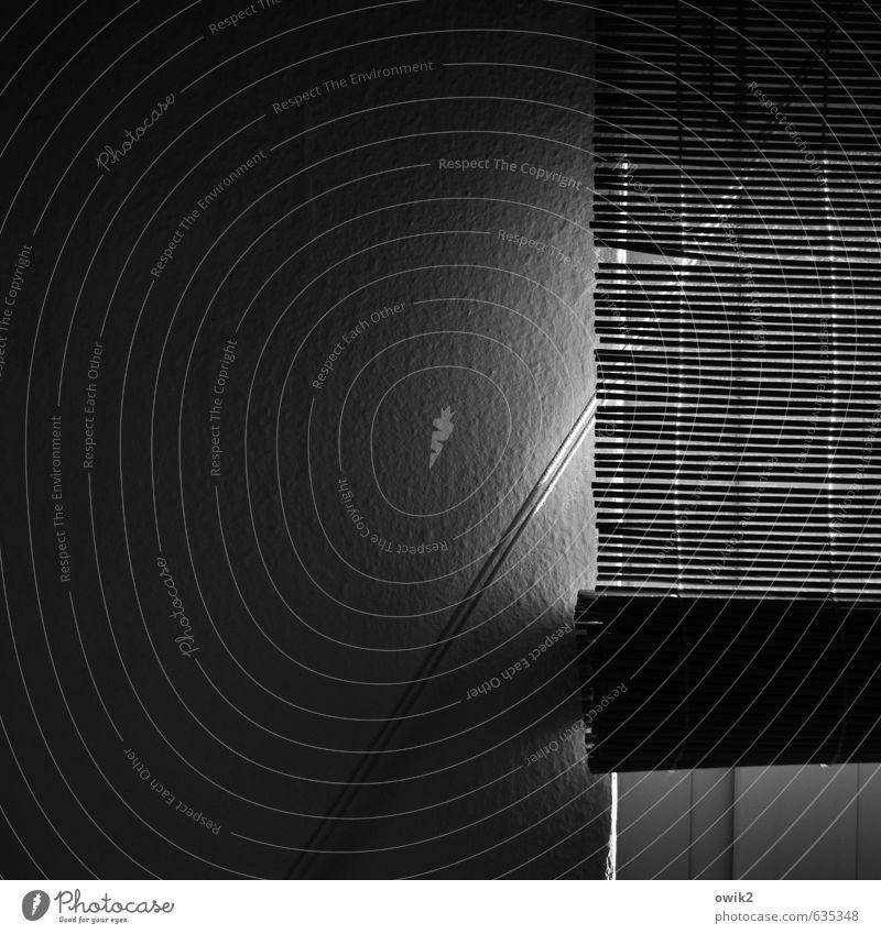 days Wall (barrier) Wall (building) Window Venetian blinds Dark Authentic Simple Wallpaper Ingrain wallpaper Window frame Rope Across Diagonal