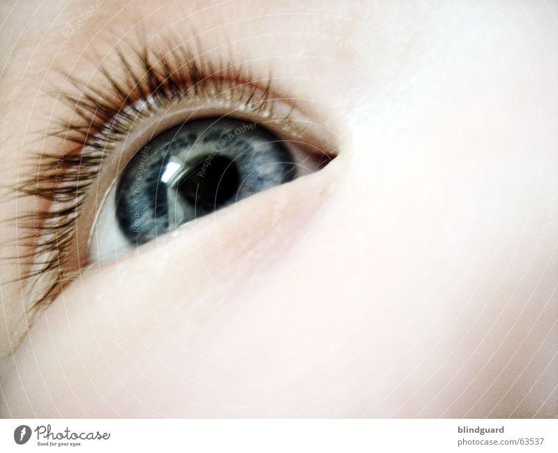 Child Joy Eyes Life Emotions Above Style Think Dream Baby Glittering Large Study Curiosity Trust Toddler