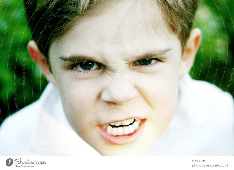 Leave my brother alone! Child Anger Threaten Scream Green Boy (child) Force 6 years Parenting Schoolchild