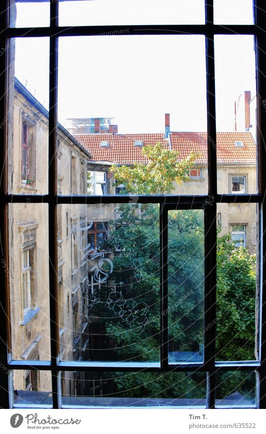 Berlin Germany European Town Capital city Downtown Old town Deserted House (Residential Structure) Window Homesickness Backyard Treetop Colour photo