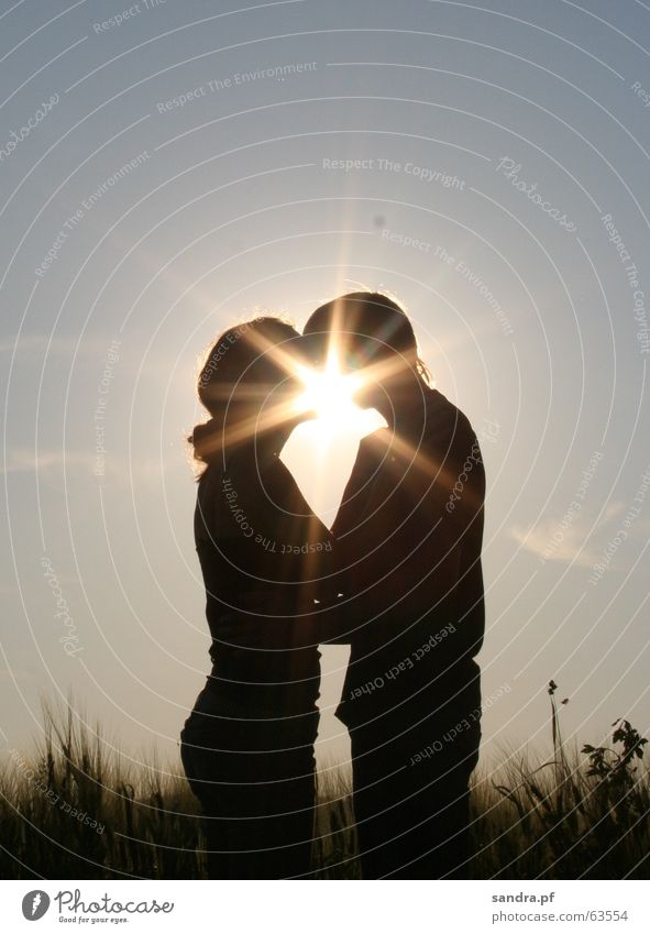 Woman Man Sun Love Couple In pairs Kissing Embrace