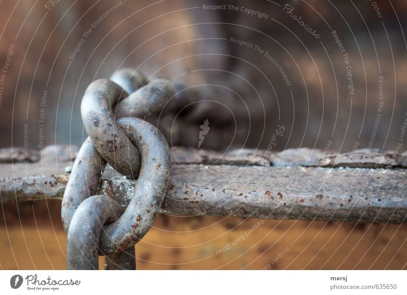 Don't worry, it's guaranteed to hold! Construction site Chain Chain link Metal Steel Rust To hold on Hang Old Authentic Firm Cold Strong Gloomy Gray Power Trust